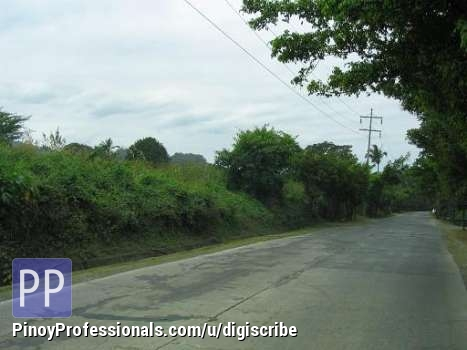 Land for Sale - Batangas City raw land for sale 18 hectares ideal for housing projects