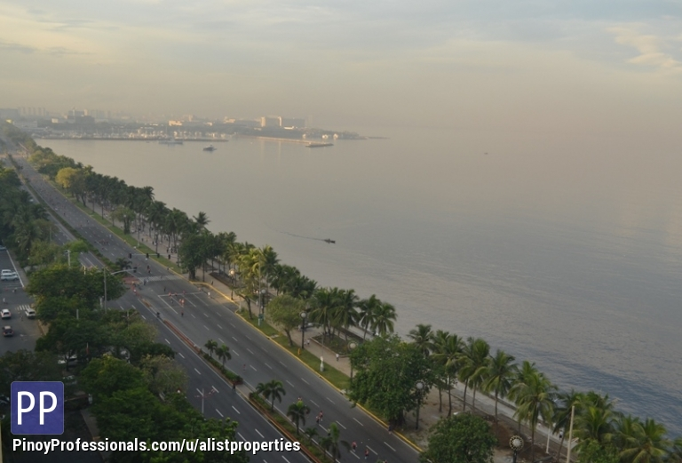 Land for Sale - Commercial Lot for Sale - Bay City Manila