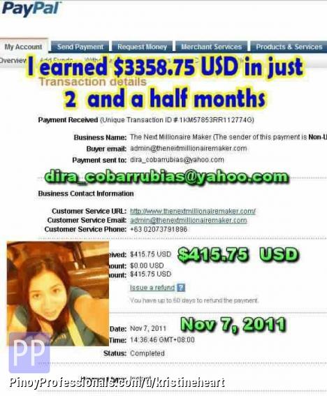 Make Money Online - online money making craze