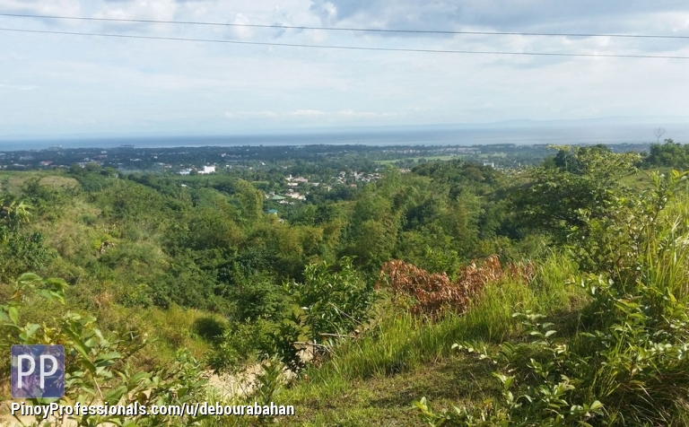 Land for Sale - Residential lot for sale in Southern Hills View Homes, Minglanilla Cebu