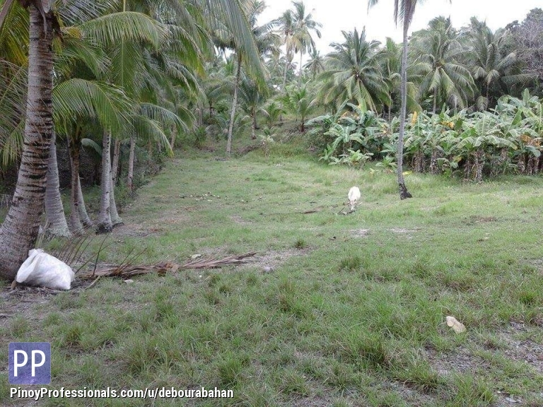 2 818 Sq M Lot For Sale At Santander Cebu Debourabahan