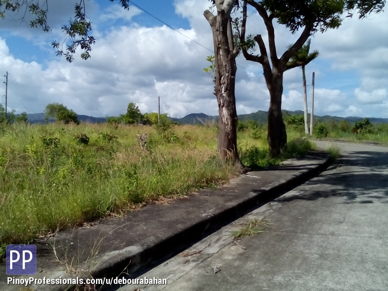 Land for Sale - 737 sq.m. Residential lot for sale at Alta Vista Residential, Cebu City
