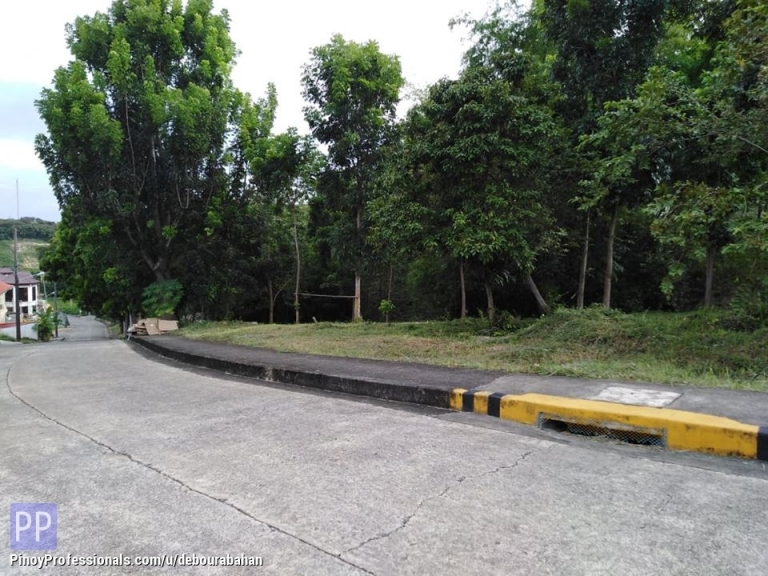 Land for Sale - 308 sq.m. Residential Lot for sale at Royale Cebu Estate Subd.,Consolacion Cebu