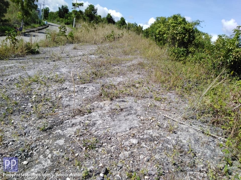 Land for Sale - 205 sq.m. Lot for sale at Vista Grande Subdivision, Talisay City, Cebu