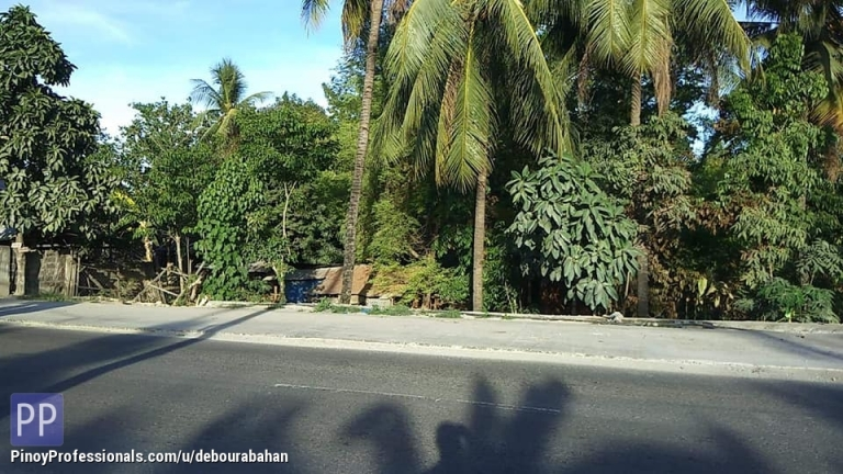 Land for Sale - 1985 sq.m. Lot for sale at San Fernando Cebu along National Road