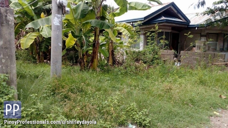Land for Sale - Lot for sale 100sq.m. Vito Minglanilla Cebu