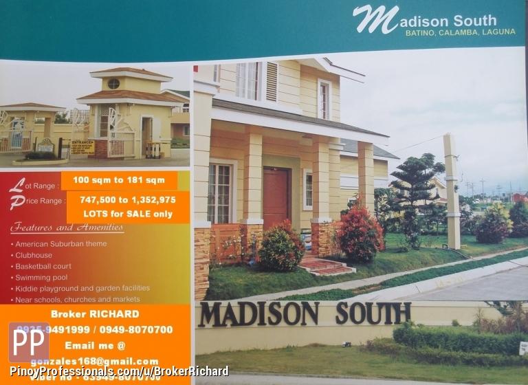 Land for Sale - MADISON SOUTH Bgy Batino, Calamba Laguna LOW PRICED LOTS