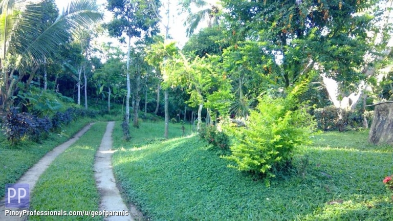 Land for Sale - Farm lot for Sale Silang Cavite