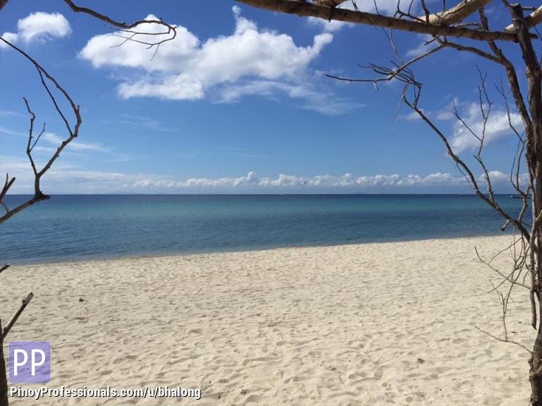 Land for Sale - For Sale Beach Lots in Laiya San Juan Batangas Secured Playa Laiya