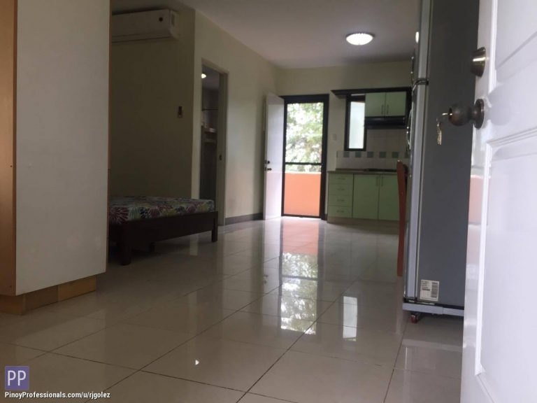 Apartment and Condo for Rent - Fully Furnished 38sqm Studio near USC Talamban Cebu City