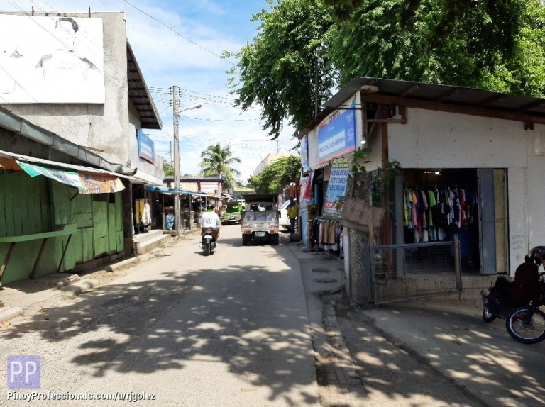 Land for Sale - COMMERCIAL LOT FOR SALE IN MANDAUE CITY