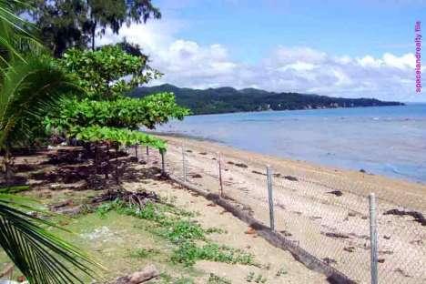 Land for Sale - Beach Lot / Beachfront Property (FOR SALE), 2827sqm - Carmen, Cebu