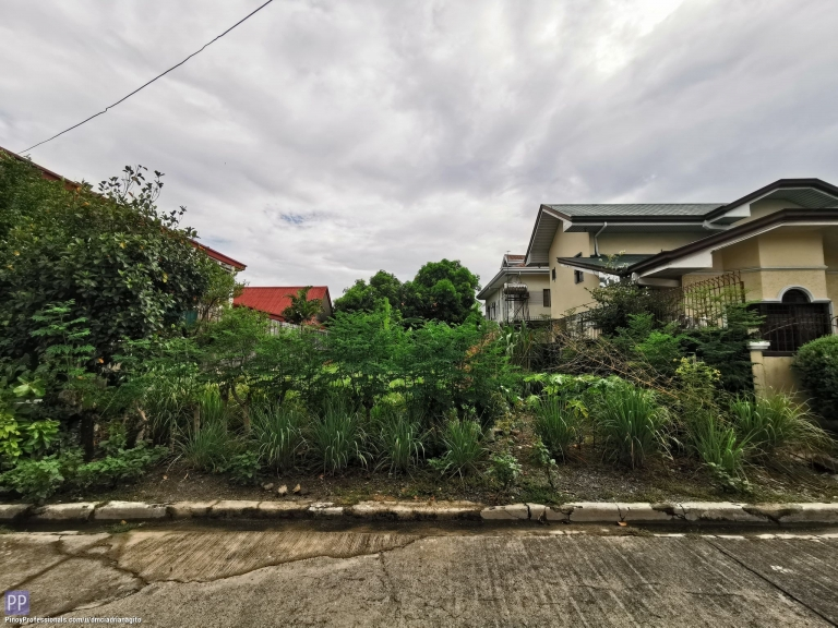 Land for Sale - Greenwoods Executive Pasig City Lot for Sale near Clubhouse
