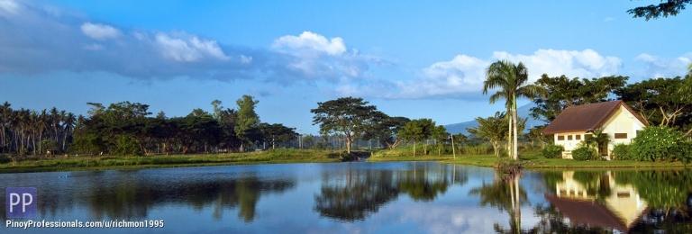 Land for Sale - Lot For Sale in Hacienda Escudero Tiaong Quezon