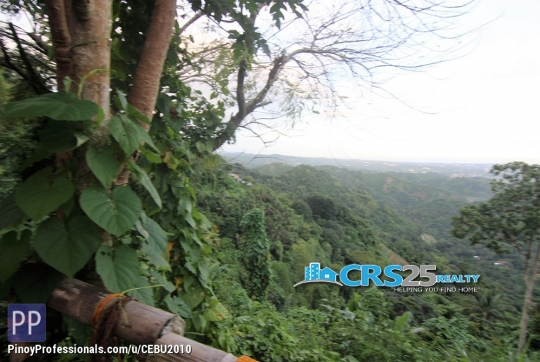 Land for Sale - FOR SALE!! 19,100 sqm Lot in Busay Cebu City
