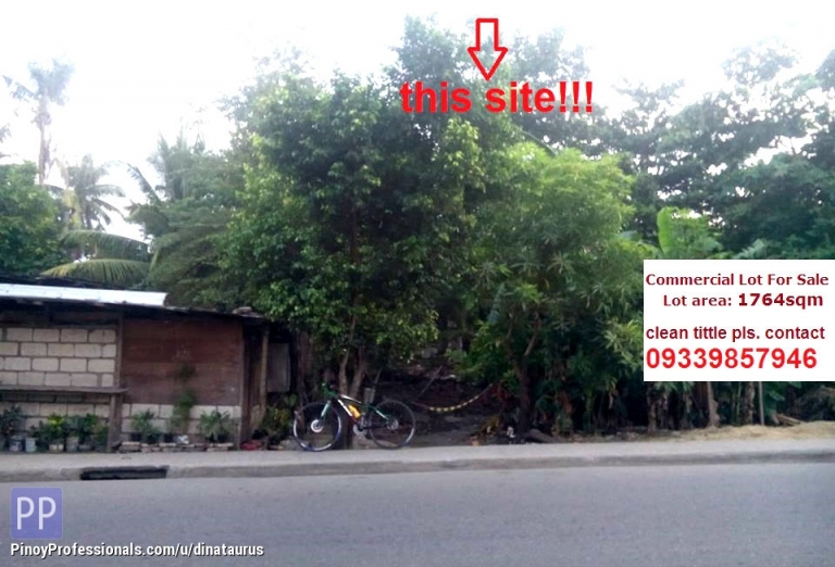 Land for Sale - Commercial Lot Along the Road in Gun-ob Lapu-lapu City Clean Tittle