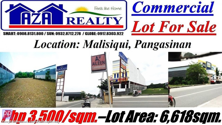 Land for Sale - Php 3,500/sqm. Commercial Lot For Sale 6,618sqm. Malasiqui Pangasinan