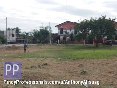 House for Sale - Residential Lot For Sale 119sqm. Dulalia Executive Village Valenzuela