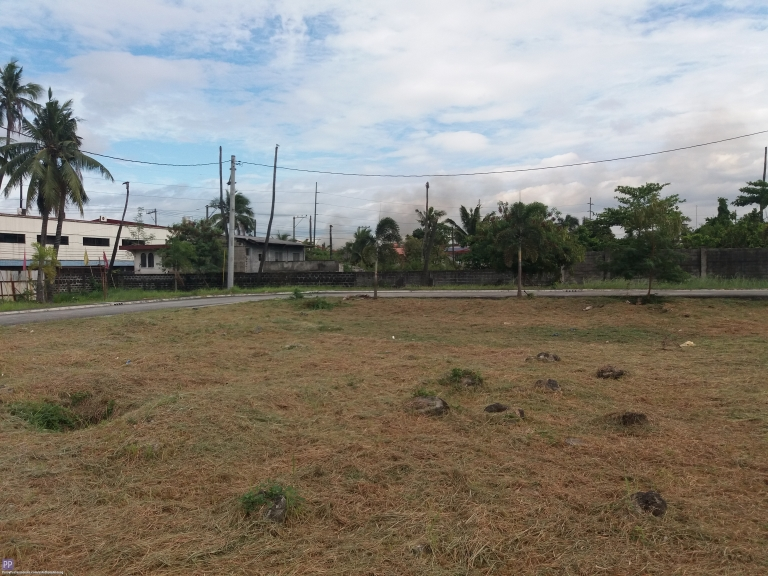 House for Sale - Vacant Lot For Sale 194sqm. Dulalia Executive Village Meycauayan Meycauayan Bulacan
