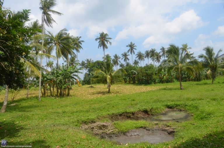 Land for Sale - Batangas Property