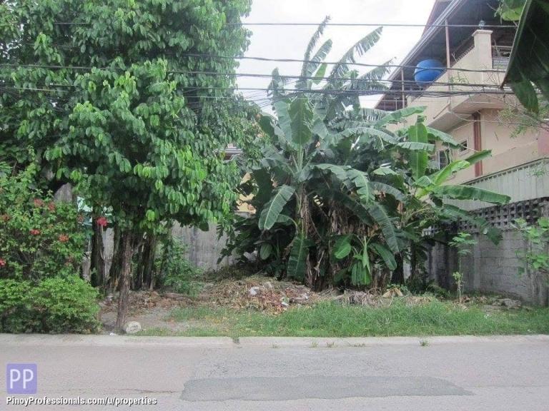 Land for Sale - Cainta Greenpark, Felix Avenue