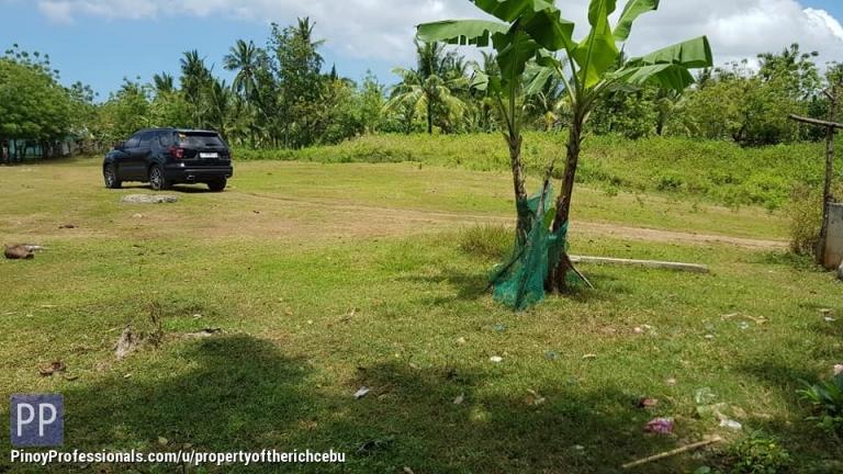 Land for Sale - RUSH PLAIN BEAUTIFUL LOT FOR SALE IN SAN REMIGIO, CEBU