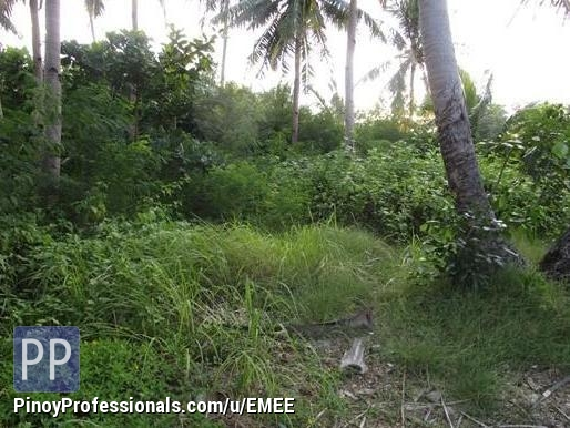Land for Sale - AGRICULTURAL FARM FOR SALE IN PAGSANJAN LAGUNA!..