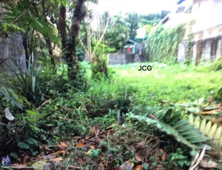 Land for Sale - LOT FOR SALE AT FILINVEST 1 BATASAN HILLS QUEZON CITY