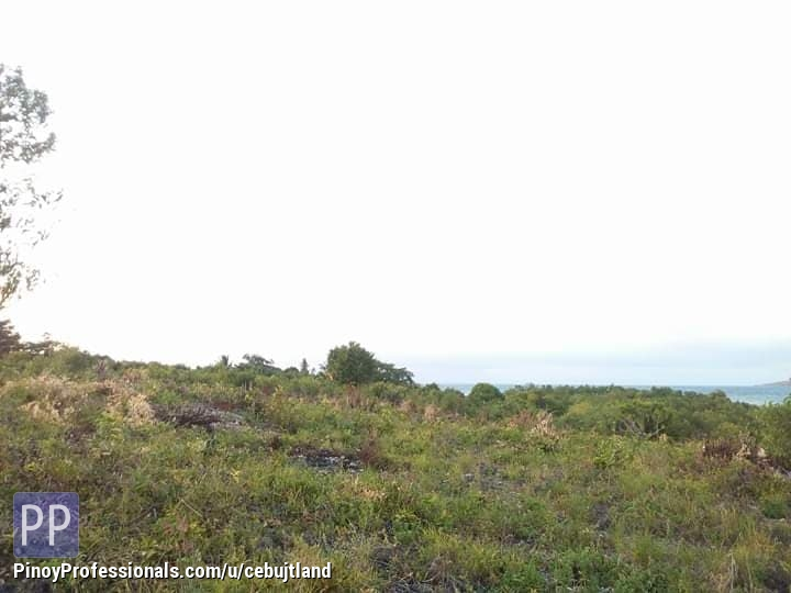 Land for Sale - BEACH LOT WHITE SAND ONLY ?1,500/sqm , NEGOTIABLE CAN BE A RESORT, OR A HOTEL - BIG INCOME POTENTIAL