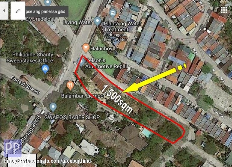 Land for Sale - Commercial LOT in Sudtungan near Shopwise and Dan Enrico Hardware PRICE NEGOTIABLE